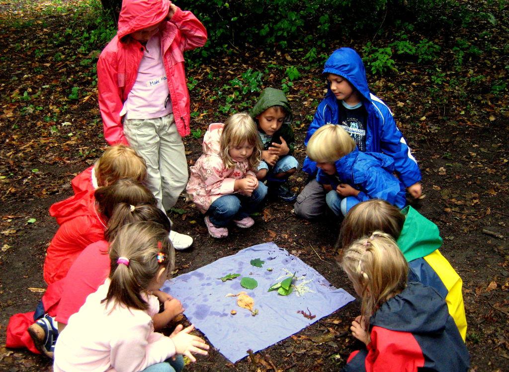 In der Vielfalt des Waldes findet jede/r etwas anderes: Eine Grundschulklasse bestimmt Blätter. Foto: Rainer Schwab