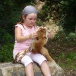 Ein Mädchen nimmt Kontakt auf mit einem Fuchsfell. Foto: Rainer Schwab